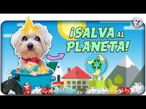 Mi PERRO Salva al PLANETA TIERRA!🌍 Dasha te enseña a RECICLAR!♻️🐶Anima Dogs