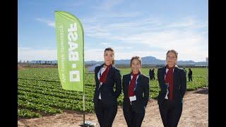 CLIENTE BASF - Spot conferencia innovación en la huerta de Murcia