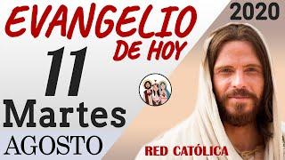 Evangelio de Hoy Martes 11 de Agosto de 2020 | REFLEXIÓN | Red Catolica
