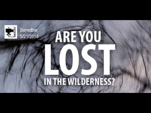 Are You Lost in a Wilderness? - Dealing with a Hostile World