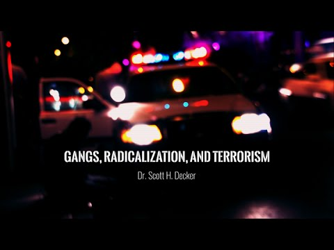 The Gang and Terror Extremism Overlap