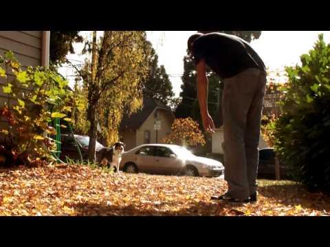 Who is OTR? - Tom Dasso