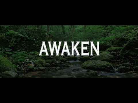 Alan Watts ~ If you're listening to this lecture then you're ready to wake up...