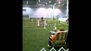 Ashlee's First Mach Points Ex Jww 3rd Place 3-27-11