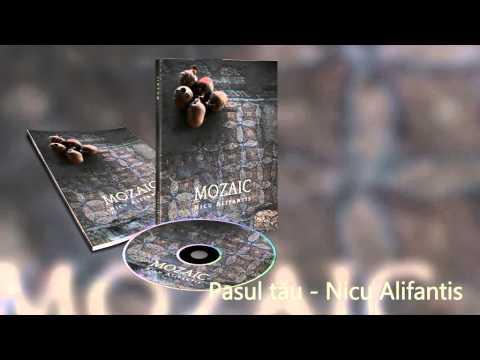 Nicu Alifantis Pasul tau