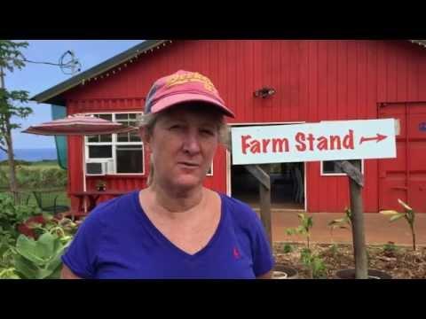 Organic farming in Maui