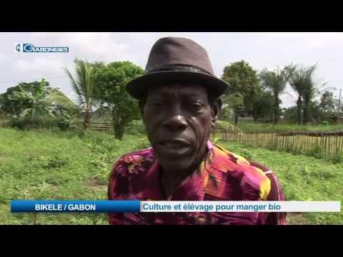 BIKELE / GABON:  Culture et élévage pour manger bio