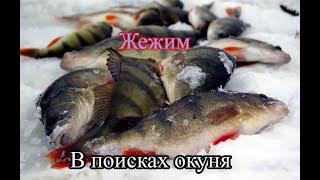 В поисках окуня Рыбалка Севера