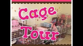 Guinea Pig New And Improved Cage Tour