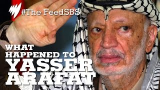 Yasser Arafat's Cause Of Death I The Feed