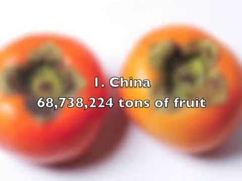 Top 10 Countries With The Most Fruit Production