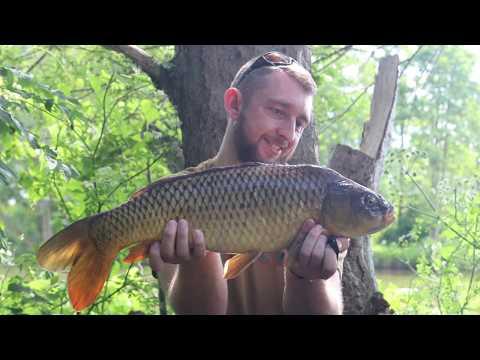 Liverpool Carpers:  Hurlston Hall Fisheries