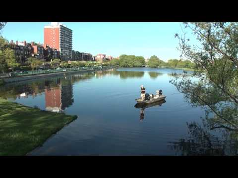 Fishing the Lower Charles River (short version)