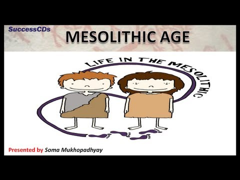 Mesolithic Age - CBSE NCERT Social Science