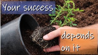 The Secret to Start Your Own Plant Nursery