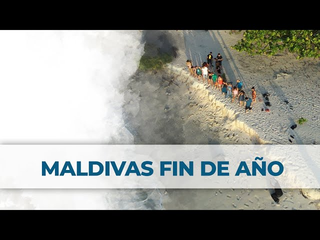 2 Little Divers | Maldivas Fin de Año