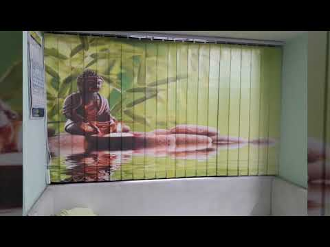 CUSTOMIZED VERTICAL BLINDS