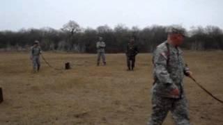 Basic Dog Handling Video On Pitch Tones... Bucket Training Military Style