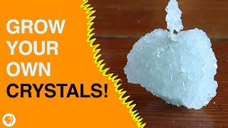 Grow Your Own Crystals!