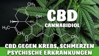 CBD (Cannabidiol) und seine WIRKUNGEN - KREBS, DEPRESSIONEN, SCHMERZEN etc.