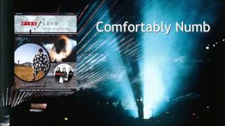 Pink Floyd - Comfortably Numb (1988) Sigma 120 SBD
