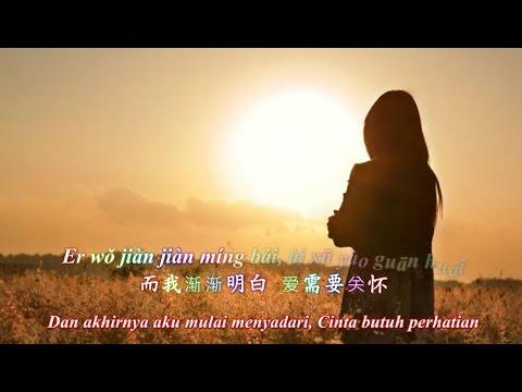 Xu Duo Nian Yi Hou 许多年以后 [Beberapa Tahun Kemudian]