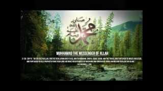 SUNTAN CHAANEN WAND'HA PAAN |Kashmiri Nasheed| Mubashir Ah. Veeri| M. Anwar Shopiani[rh]