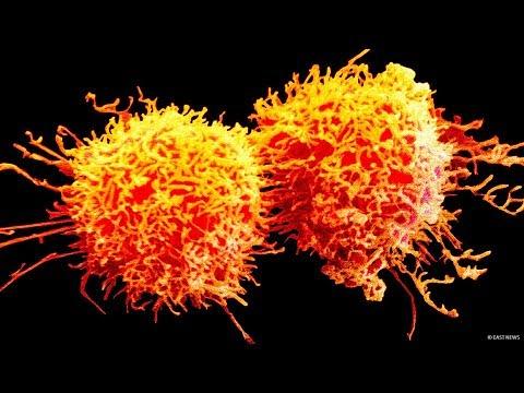 Der Wissenschaft zufolge ist die Heilung von Krebs in einem Jahr möglich