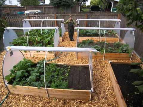 backyard vegetable garden design