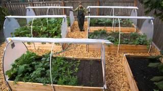 Backyard Vegetable Garden Design Ideas I Vegetable Garden Designs And Ideas