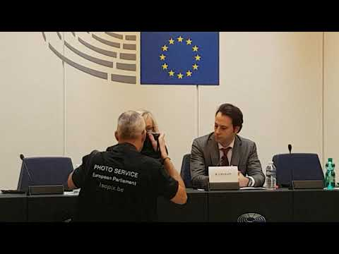 about Carbon Emissions and ETS European Parliament Julie Girling