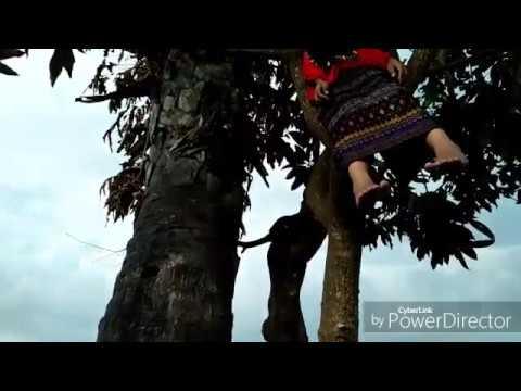 Free Download Film Pendek - Cinta Sehidup Semati Mp3 dan Mp4
