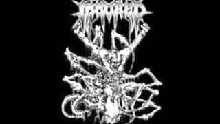 Immured - Buried Alive