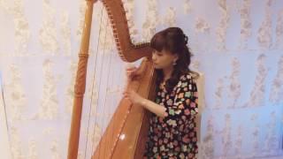 アルパ(南米パラグアイの民族楽器)の魅力を、J-popを通じて、福岡から発...