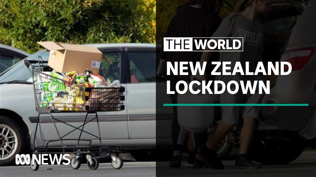 Reaction to NZ's second coronavirus lockdown | The World