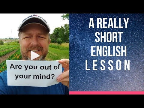 Meaning Of ARE YOU OUT OF YOUR MIND? - A Really Short English Lesson With Subtitles