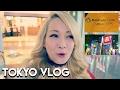 Vlogs & Laifu Updates video