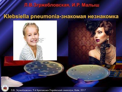 Klebsiella pneumonia: знайома незнайомка. Л.В. Згржебловська