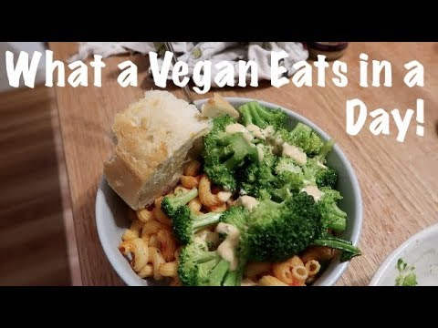 What a Vegan Eats in a Day!