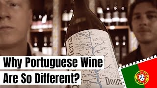 """Rick teaches me """"Why Portuguese Wine Are So Different?"""" (in AMSTERDAM)   VLOG 01"""
