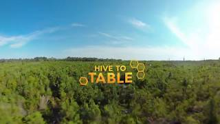 Be the Bee – A Hive to Table Experience thumbnail