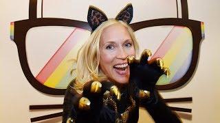 Поклонники кошек собрались на фестивале в США (новости)