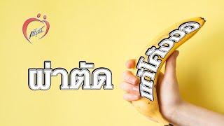 Repeat youtube video ชูรักชูรส 15 ก.ย.54_3/3