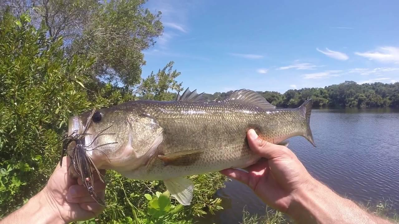 Travel vlog 2 bass fishing st augustine florida youtube for Fishing st augustine
