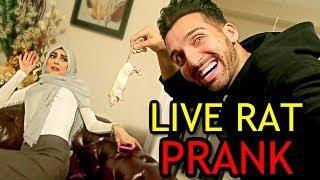 LIVE RAT PRANK (Epic Reation!!)