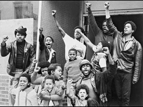 Could Black Panther Party Have Achieved Universal Healthcare? Alondra Nelson