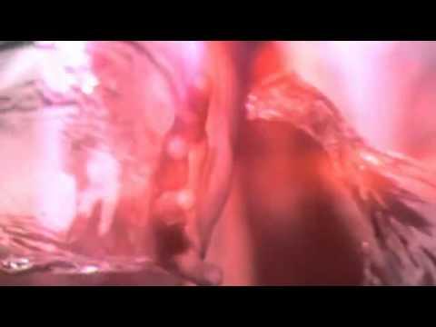 Fernanda Tavares: Haircare Commercial - Version 2 ...