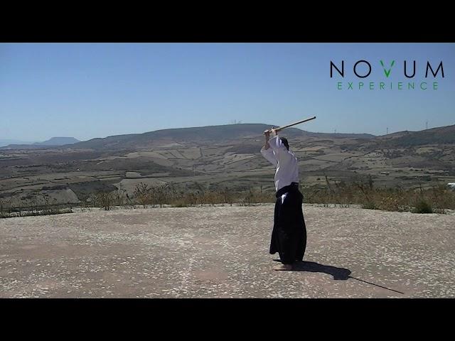 11 Katate gedan gaeshi -Aikido Novum Experience- Jo Suburi- Katate sanbon -片手下段返し -杖素振り20本 - 片手3本