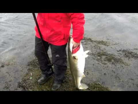 Norway shore fishing with Ian Peacock