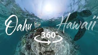 Take a 360° Video Tour of Oahu, Hawai'i
